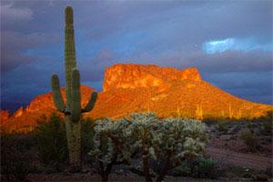 Arizona Web Hosting Web Hosting And Web Design Services